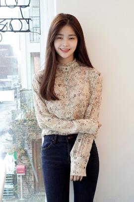 minipin, blouse